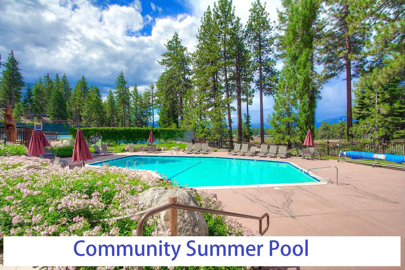 LVC0838 Community Pool