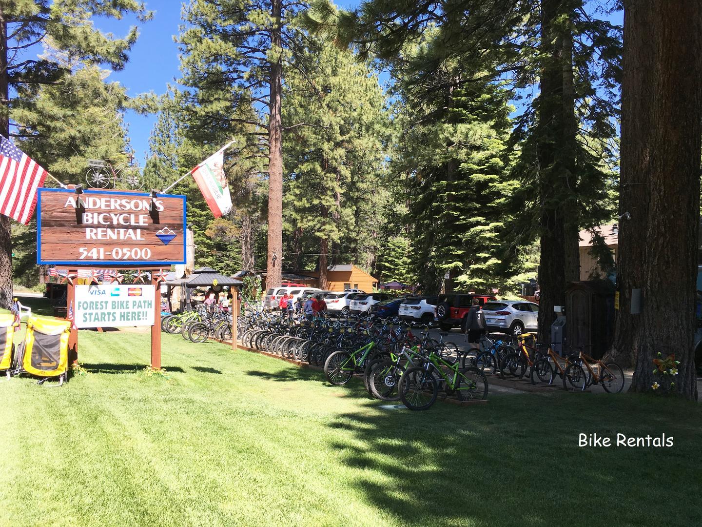 cyh1098 bike rental